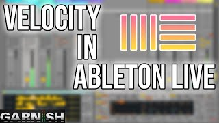 Download Velocity in Ableton Live | Garnish Music Production School Video