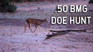 Download Unbelievable .50 BMG Whitetail Deer Hunt Video
