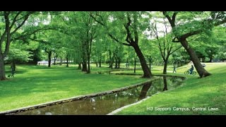 Download A Short Introduction to Hokkaido University Video