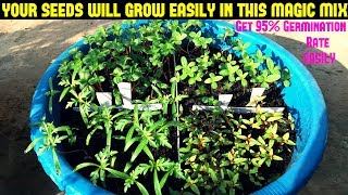 Download How To Grow Flower Seeds Fast(Get 90-95% Germination Rate Easily With Updates) Video