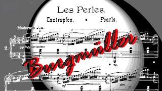 Download Friedrich Burgmüller - Les Perles op. 109 n. 2 Video