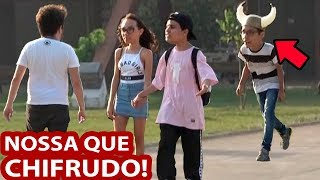 Download NOSSA QUE CHIFRUDO! Video