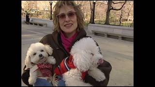 Download 1990 - Her Dog Died Of Air Pollution In NYC Video