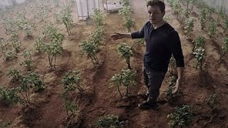 Download Growing potatoes on Mars: NASA researches space farming in Peru Video
