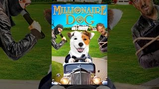Download Millionaire Dog Video