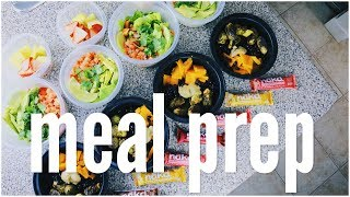 Download 7 Day Meal Prep // Less Than $10 A Day Video