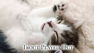 Download Trout Played Out Video