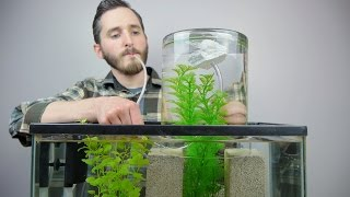 Download Make A Vacuum Suspended Fish Tank Video