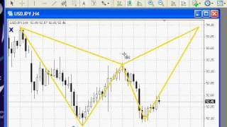 Download Harmonic Trading - How to a Draw Video