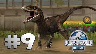 Download FASE DE BATALLA 23 + BATALLAS DE DEINOCHEIRUS - Jurassic World The Game #9 Video