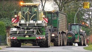 Download Das letzte Maisfeld - Maishäckseln 2017 - LU Bauch Maisernte - Maize harvest Germany - farmer Video