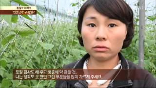 Download [통일로 미래로] 탈북민 수희 씨의 행복한 귀농일기 Video