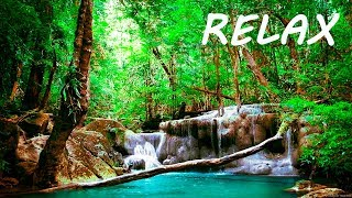 Download Relaxing Music and Soothing Water Sounds 🔴Sleep 24/7 BGM Relaxation Video
