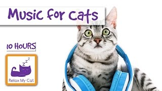 Download 10 Hours of Cat Music OUR LONGEST YET! Video
