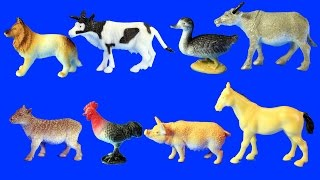 Download Learn Farm Animals Names For Kids - Animal Toys Video Video