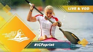 Download 2019 ICF Canoe Sprint & Paracanoe World Cup 1 Poznan Poland / Day 2: Heats, Semis / Para Finals Video