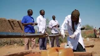 Download WHO's new Health Emergencies Programme Video
