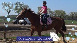 Download Tessa rijdt op Tessa * Hart voor Paarden & Zaressa * Video