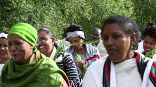 Download A Brief History Of Oromo People Video