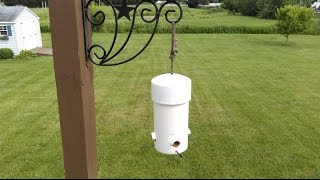 Download Make DIY Type 1 Cheap & Easy Small Birds Feeder Squirrel Big Grackle Crow Proof PVC Pipe & Wood Top Video