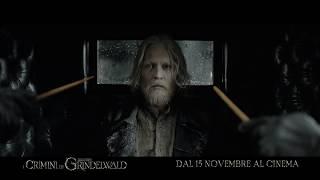 Download Animali Fantastici: I Crimini di Grindelwald - KIDS 15″ Video