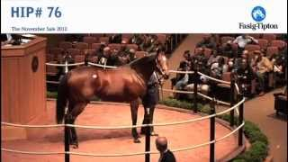 Download Havre de Grace sells for $10,000,000 at Fasig-Tipton November Sale Video