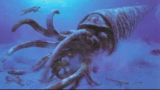 Download 5 Extinct Animals That May Still Roam The Earth Video