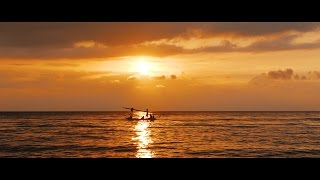 Download Sony A7S II + Gimbal: Nature's Best Video