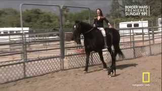 Download Jillian Michaels dressed for riding Video