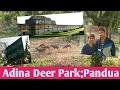 Download [BANGLA] Malda Town   Adina Deer Park   Adina Mosjid   Pandua   Adina Forest   By Road Video