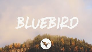 Download Miranda Lambert - Bluebird (Lyrics) Video