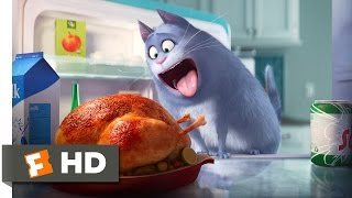 Download The Secret Life of Pets - The Owners Leave Scene (1/10) | Movieclips Video