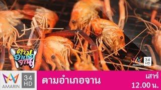 Download ตามอำเภอจาน : น้ำพริกไข่ปูและเขียวหวานปูใบชะคราม อ.บ้านแหลม จ.เพชรบุรี 25 มี.ค. 60 (1/3) Video