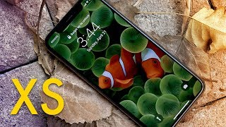 Download iPhone XS Review — 7 Months Later Video