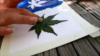 Download How to make leaf stamp art - SUMMER FUN SERIES Video