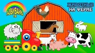 Download Мультики для самых маленьких. Какие животные живут на ферме? Домашние и дикие животные. Video