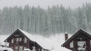 Download Blizzard Storm Sounds | Relaxing Winter Background Sounds | Heavy Wind & Snow Video