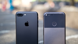 Download iPhone 7 Plus vs Pixel XL Camera Comparison Video