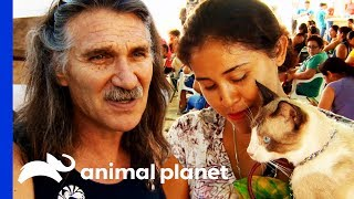 Download Mobile Vet Clinic Helps This Mexican Community And Their Pets | Dr. Jeff: Rocky Mountain Vet Video