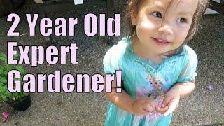 Download 2 Year Old Expert Gardener - June 13, 2015 - ItsJudysLife Vlogs Video