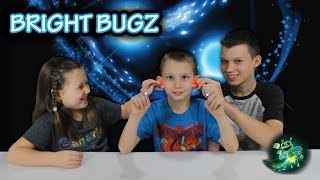 Download Bright Bugz Evolution Awesome Toy Review + GIVEAWAY 3 Sets Video