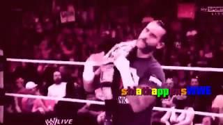 Download WWE CM Punk Tribute Renegade 2014 Video