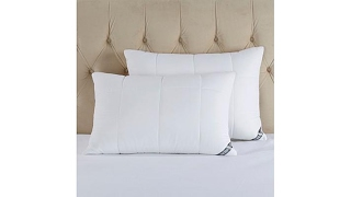 Download Concierge Collection Deluxe Cloud 2pack Pillows Jumbo Video
