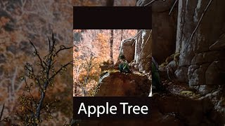 Download The Apple Tree Video