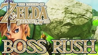 Download BOSS RUSH: ALLE IWAROK! ZELDA BREATH OF THE WILD Part 83 [Deutsch/Switch] Video