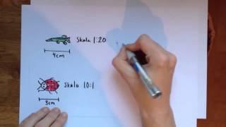 Download Film 2: Geometri Skala Video
