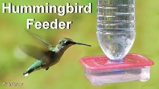 Download Hummingbird Feeder - How To Make A DIY Hummingbird Feeder Out Of Water Bottle Video