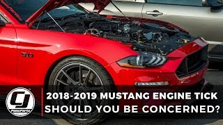 Download 2018-2019 Mustang Tick: Should You Be Concerned? Video