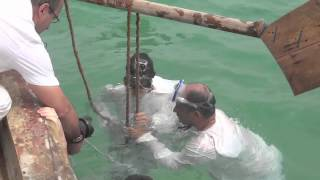 Download [Tried & Tested] Pearl Diving Video
