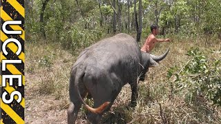 Download Water Buffalo (CAUGHT BAREHANDED) with Andrew Ucles & Adam Greentree Video
